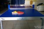מיני טניס שולחן להשכרה